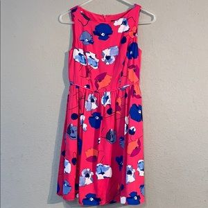 Pink Blue White Adrianna Papell Size 2P Midi Dress
